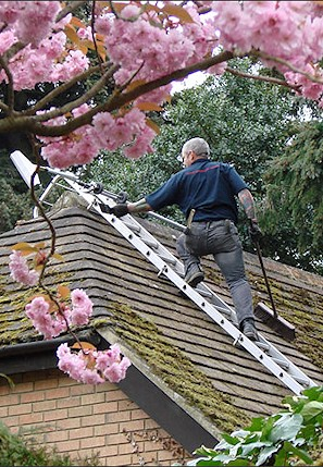 Our staff cleaning the moss from a roof in South Benfleet near Croydon